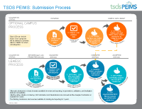 Infographic - TSDS PEIMS Process Flow THUMB